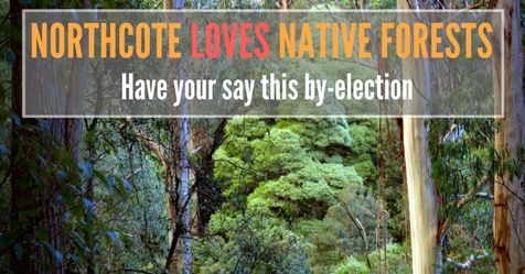 Northcote_loves_native_forests(1).jpg