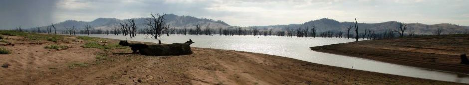 Drought1.jpg