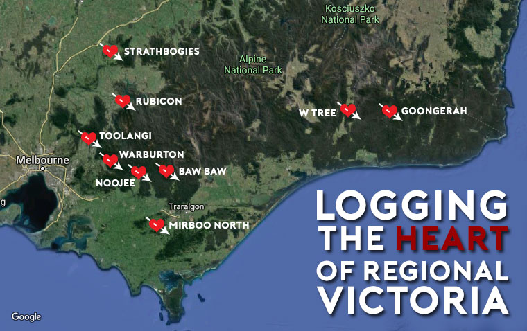 logging-the-heart-of-regional-victoria.jpg