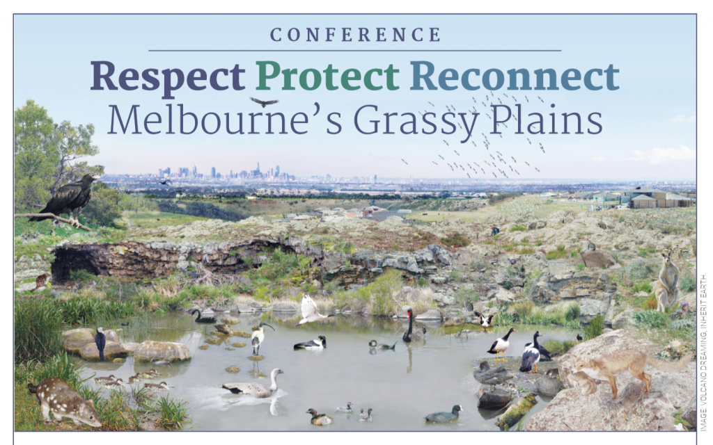 Conference_Flyer_Pic-1024x640_OCT_2018.png