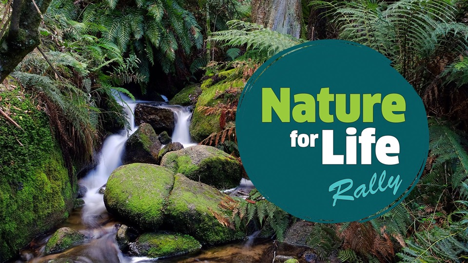 nature_for_life_rally.jpg