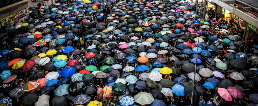 umbrellas_cropped.png