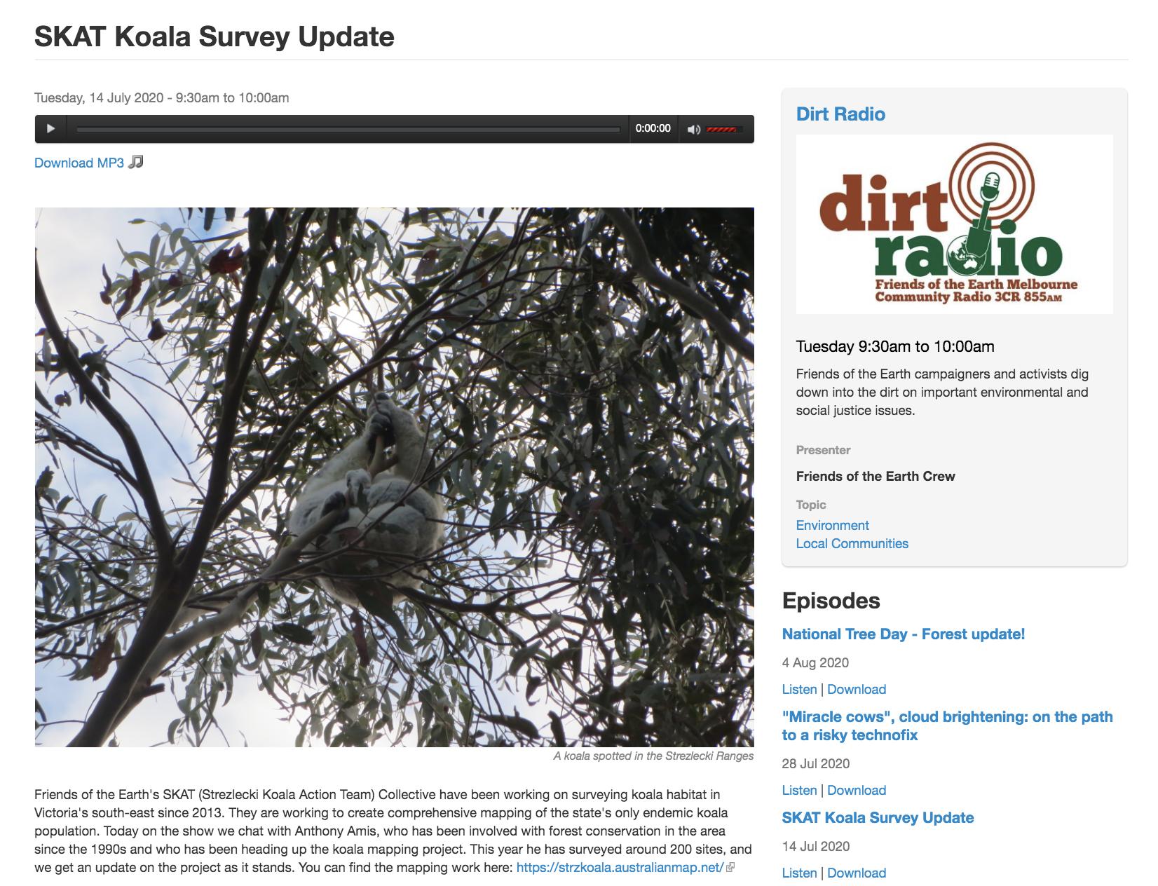 Dirt Radio Koala Update
