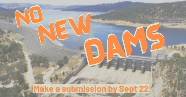 NO_NEW_Dams.jpg