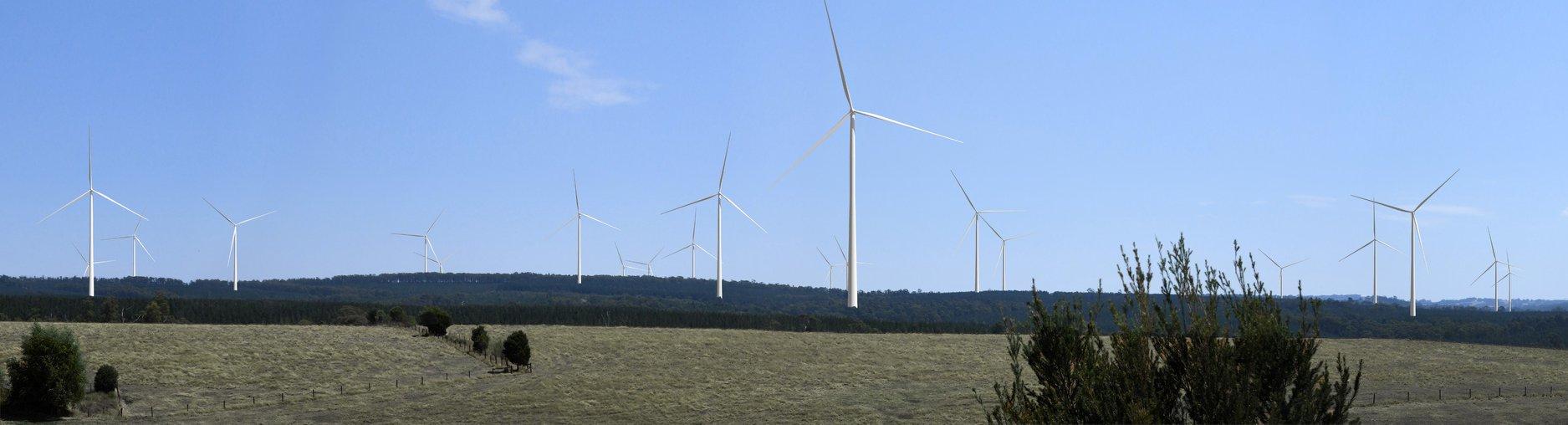 FoE Melb Delburn wind farm