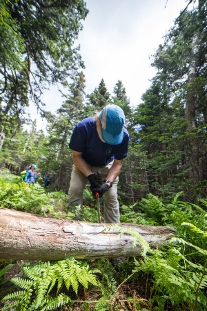 Trail Volunteer sawing