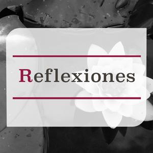 reflexiones.png