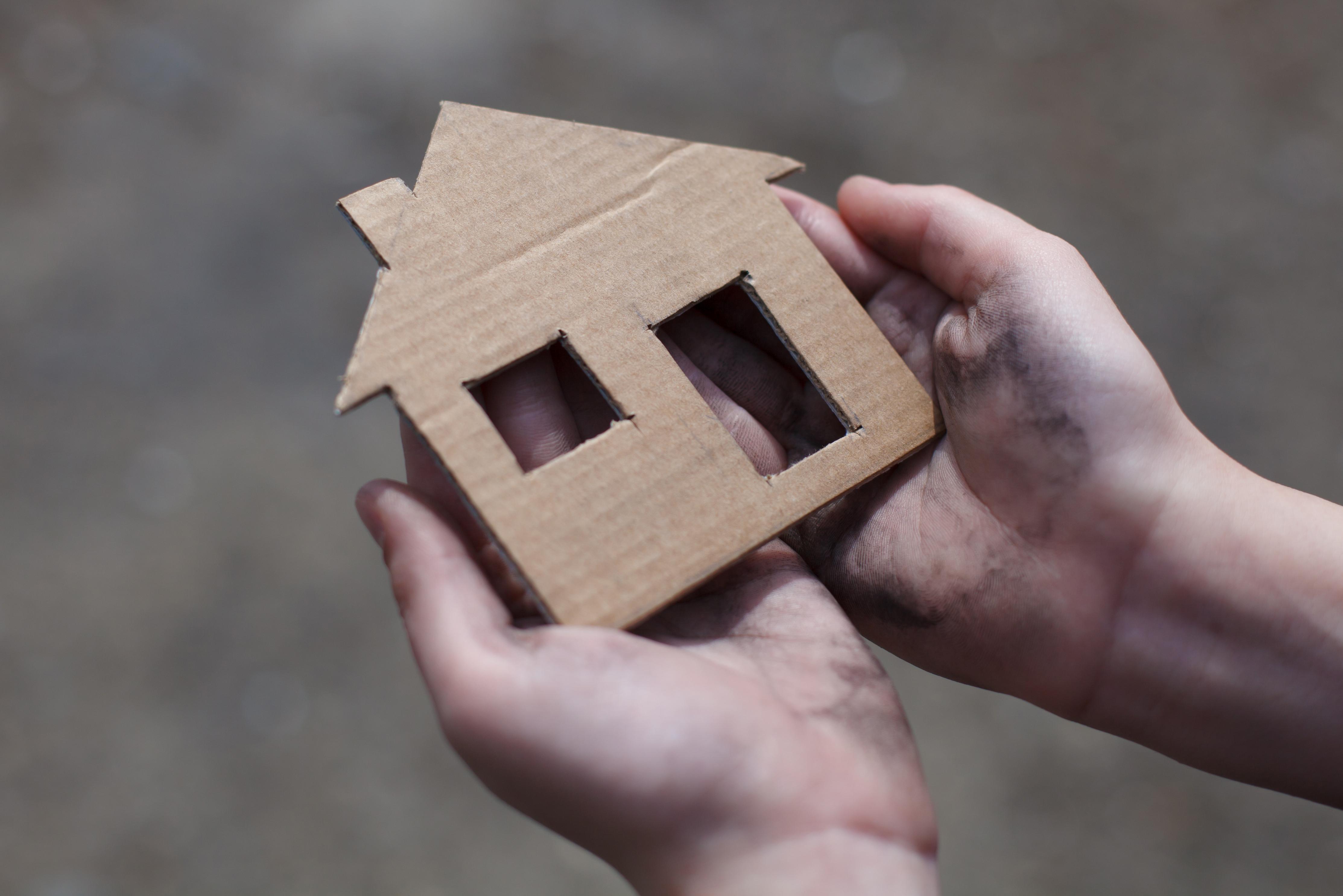 cardboard_home.jpg