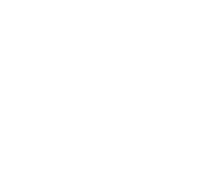 Networks_(1).png