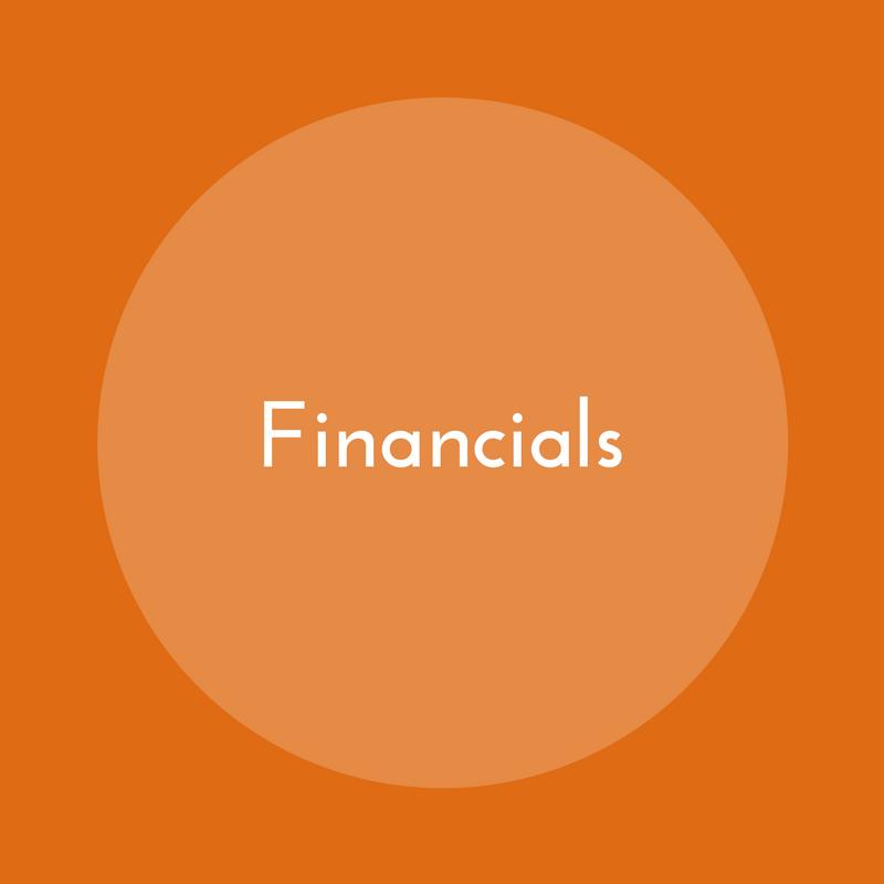 Annual_Report_Financials.png