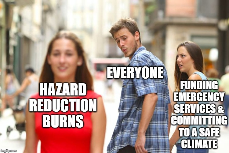 everyone distracted from funding emergency services by hazard reduction (distracted boyfriend meme)
