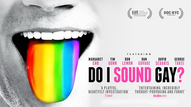 Do_I_Sound_Gay.jpg