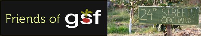 Friendsof-GSF2.jpg
