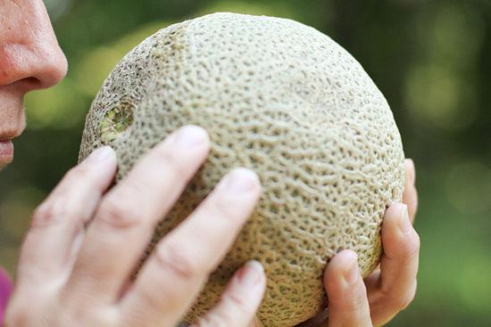 550px-Buy-a-Cantaloupe-Step-4.jpg
