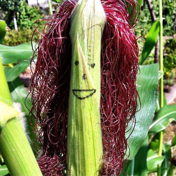 Happy_Corn_Face.png