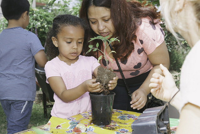 Mother_and_daughter_planting_seedlings.jpg
