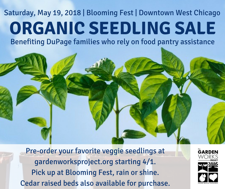 seedling_sale_(1).png