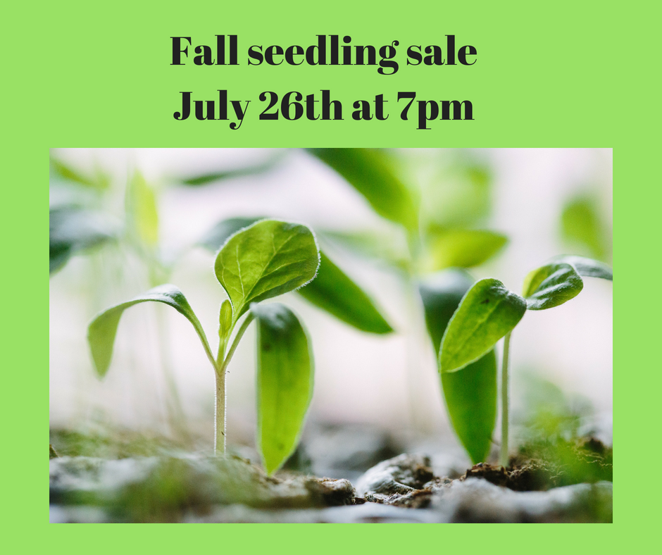 https://d3n8a8pro7vhmx.cloudfront.net/gardenworksproject/pages/2485/features/original/Fall_seedling_saleJuly_26th_at_7pm.png?1541864552