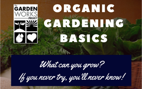 Copy_of_VeggieGardeningBasics.png