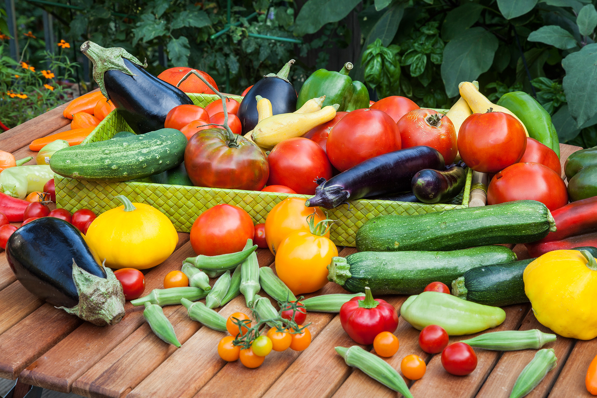 bountiful-summer-vegetable-harvest.jpg