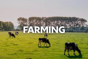 Farming Policy