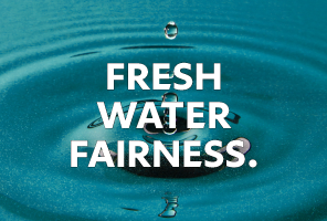 TOP 06 -  FRESH WATER FAIRNESS
