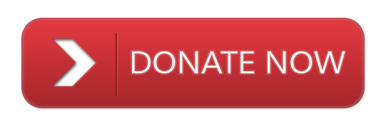 donate-button-png.png