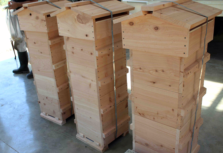 Warre Bee Hives