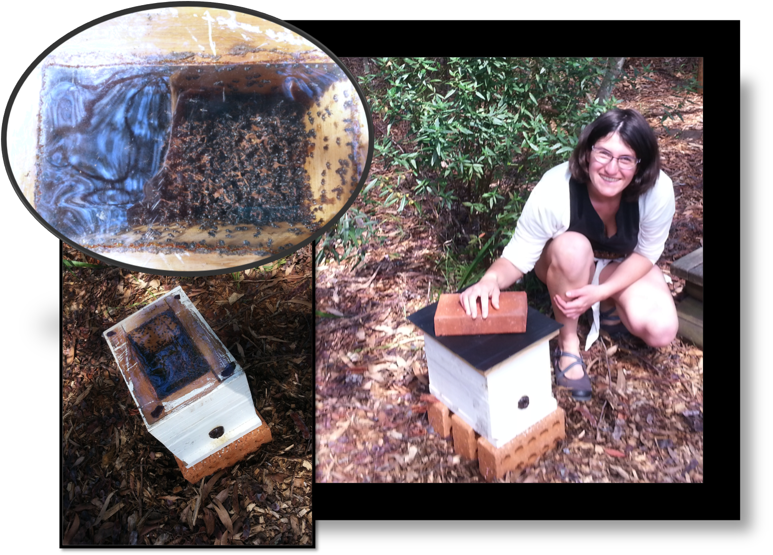 Naila and a Native Hive