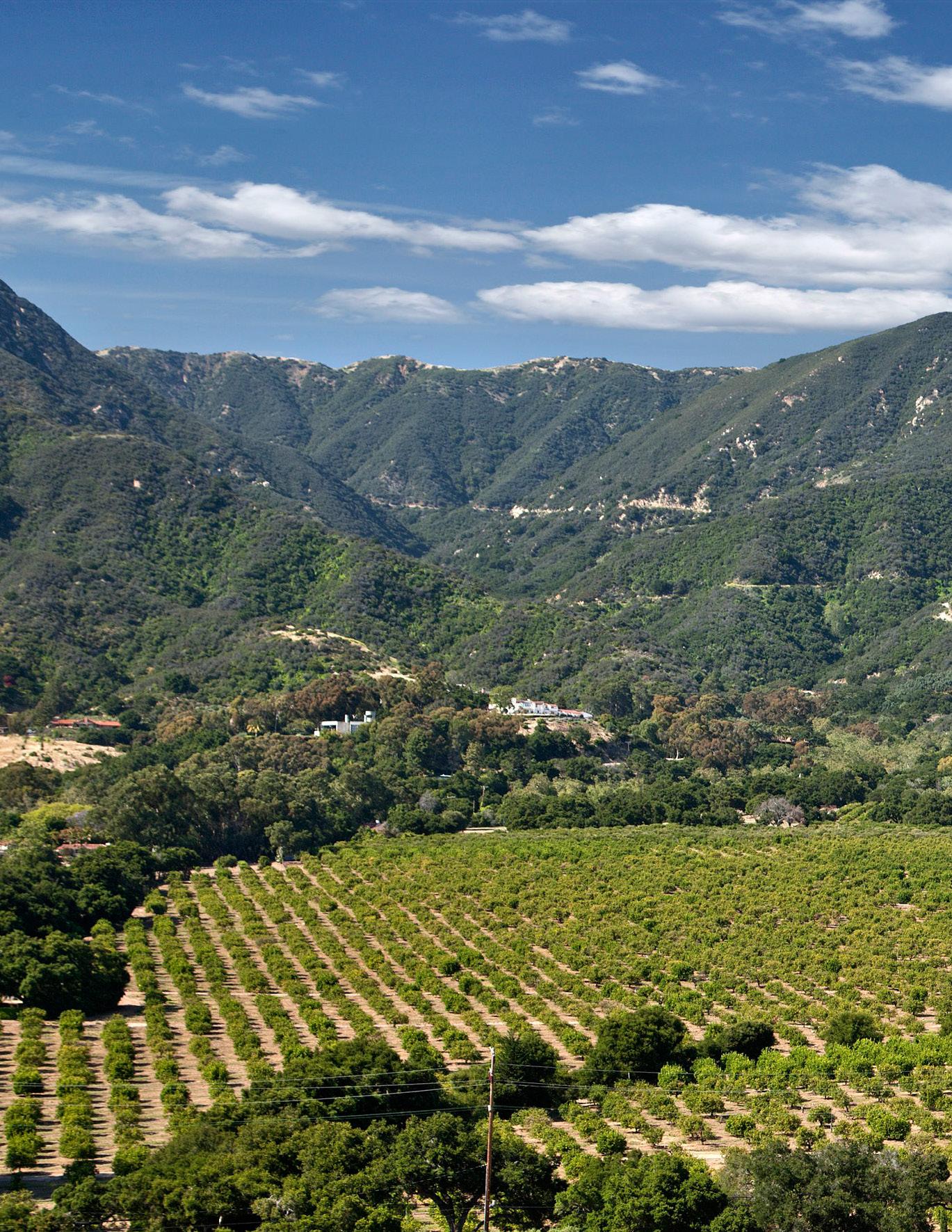 Rancho_San_Carlos.jpg