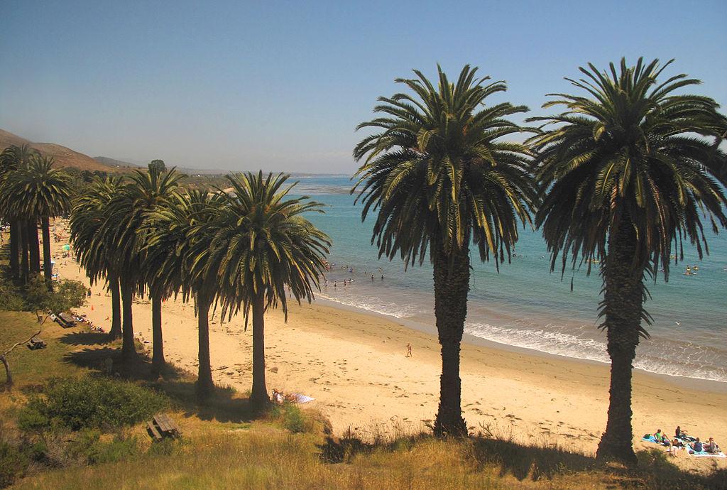 1024px-Surfers_south_of_Gaviota__California.jpg