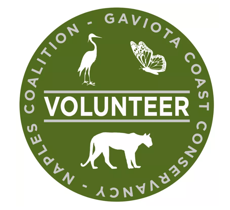 Naples-GCC-Volunteer_logo.png