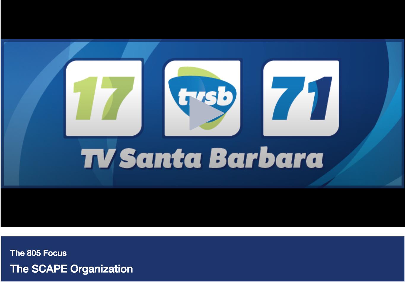 TVSB_screenshot_SCAPE_show_2019.png