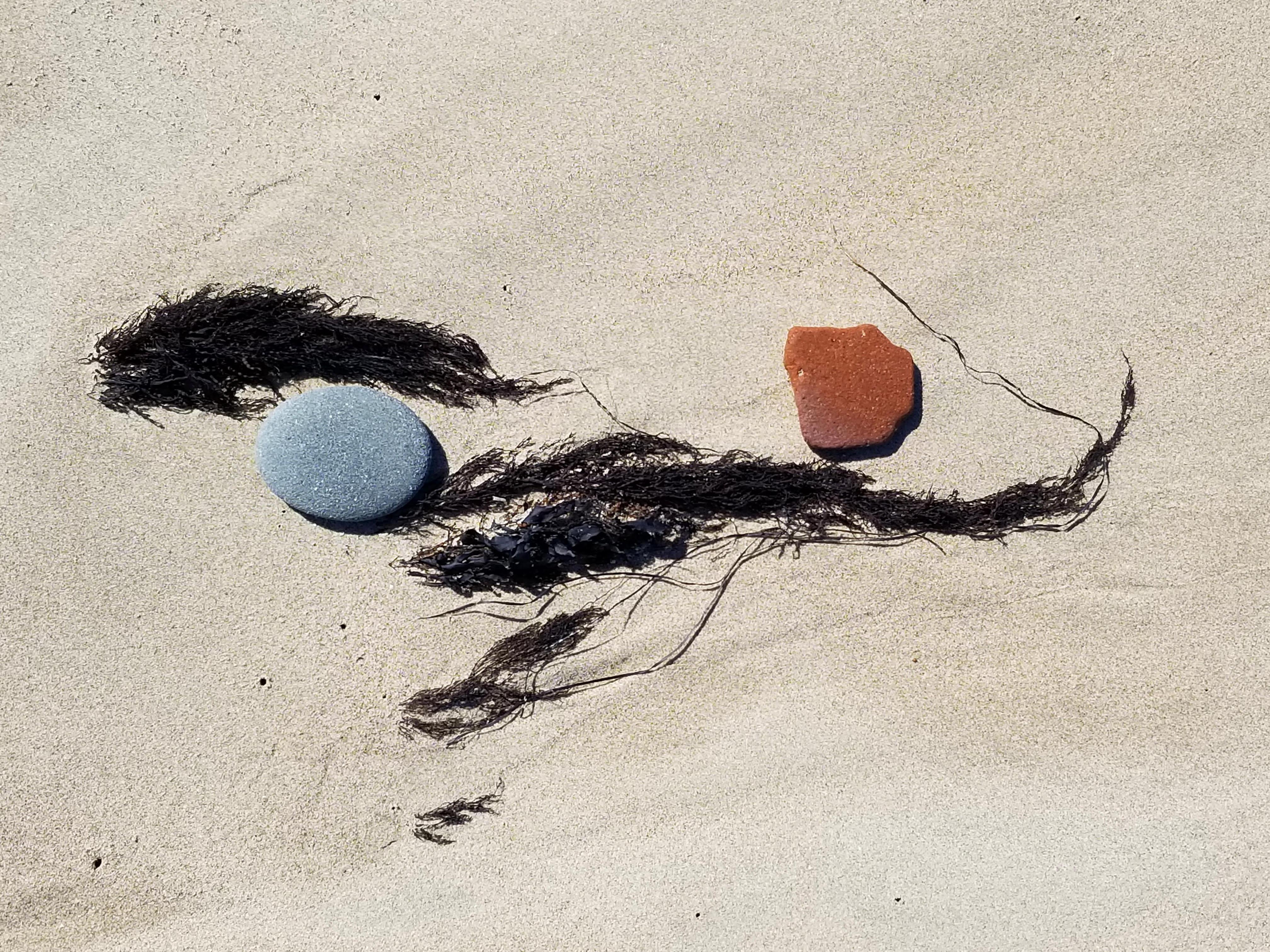 Kanji with black seaweed by Greg Karpain