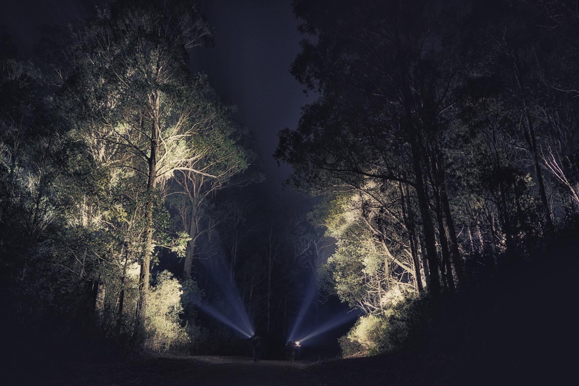 spotlighting