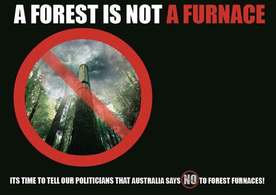 no-forest-furnace-web.jpg