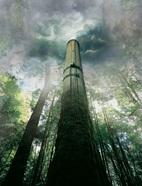 Tree_smokestack.jpg
