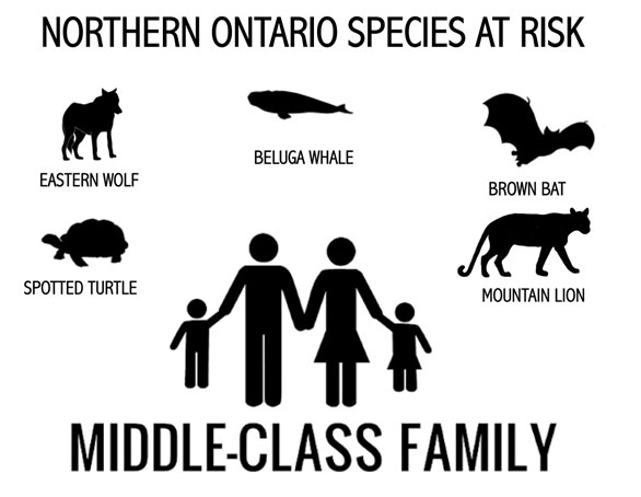 Northern-Family.jpg