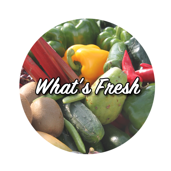 WhatsFresh_Icon.png