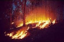 Thailand_-_Burning_Season_Sept_2015.jpg