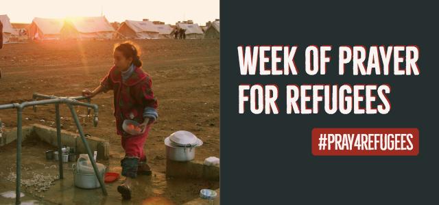 8-22_refugee.jpg