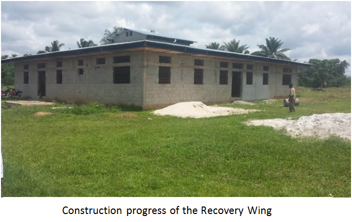 recoverywing2015.PNG