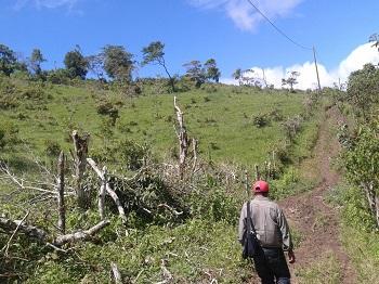 Nicaragua_-_Spring_2015_pic1.jpg