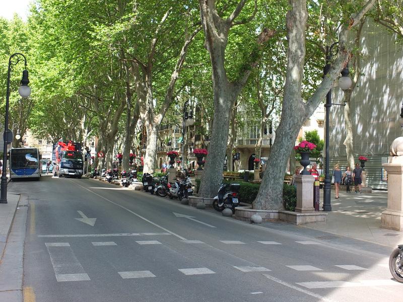 street5DSCF9715.JPG