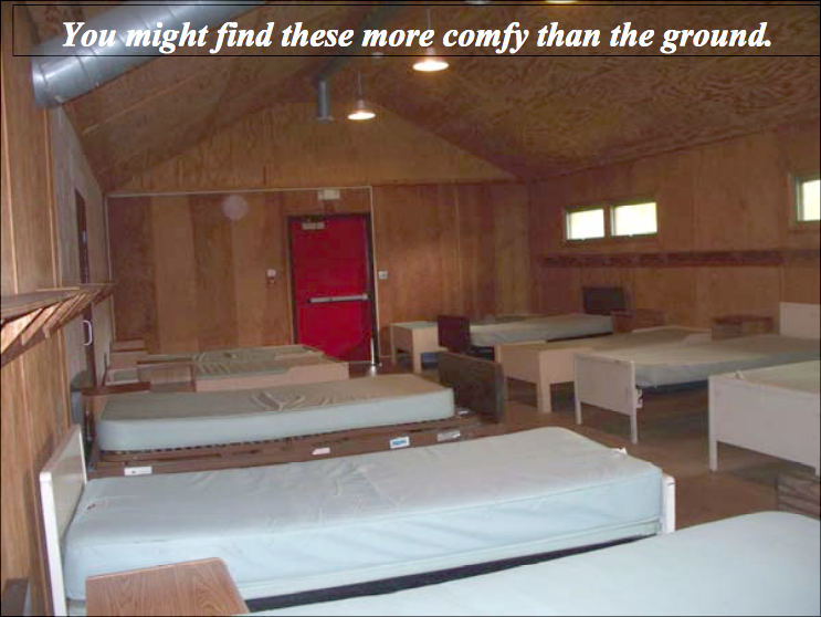 Cabin_Beds.png