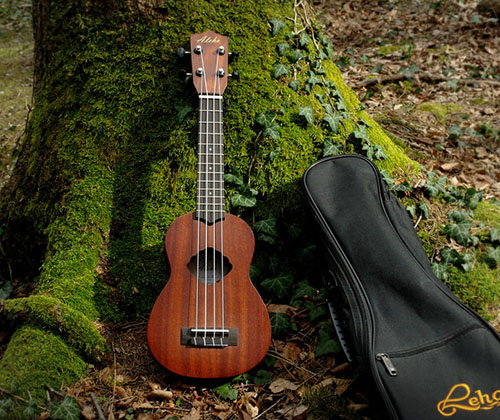 Ukulele_at_tree_crop_500.jpg