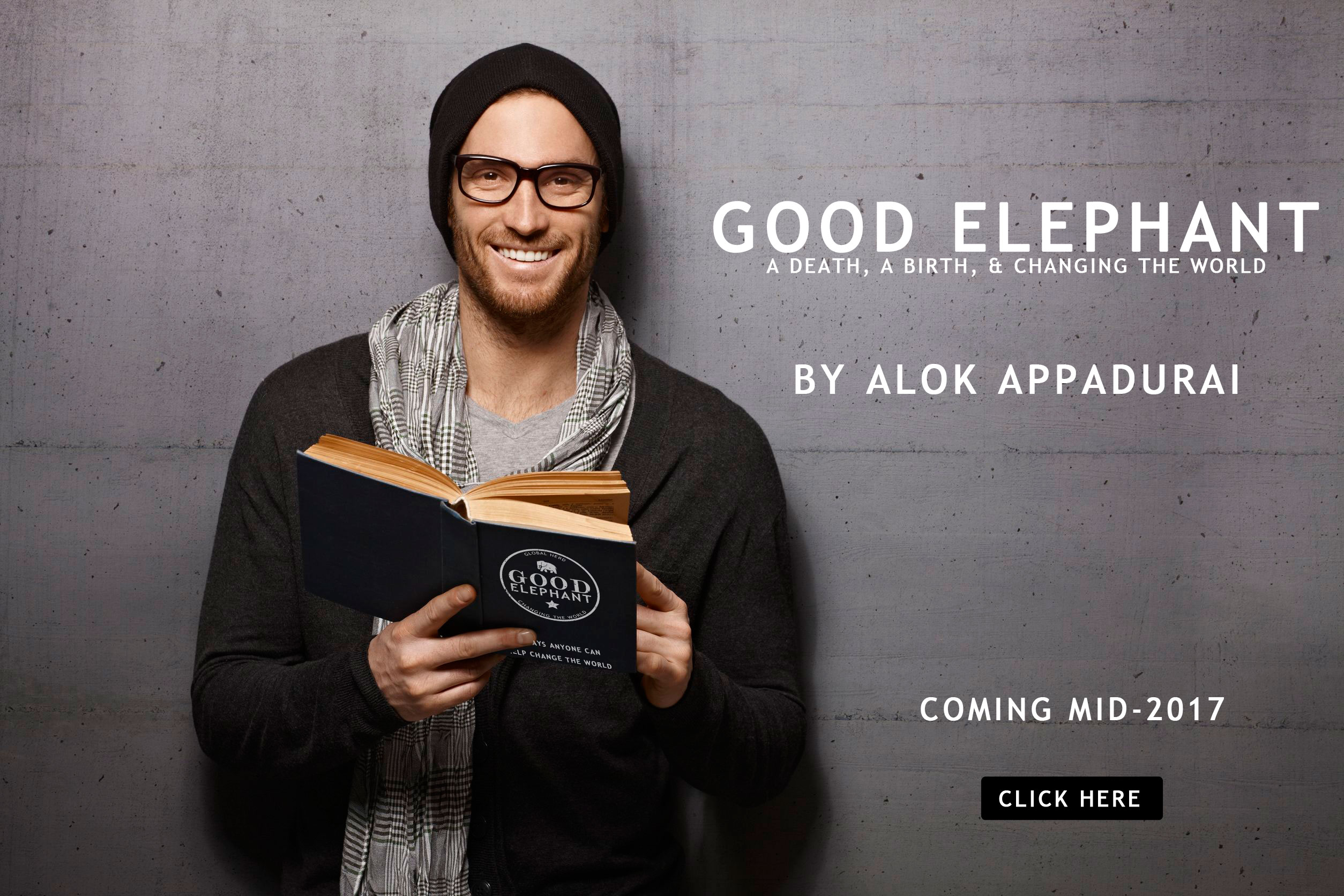 Good Elephant Book by Alok Appadurai