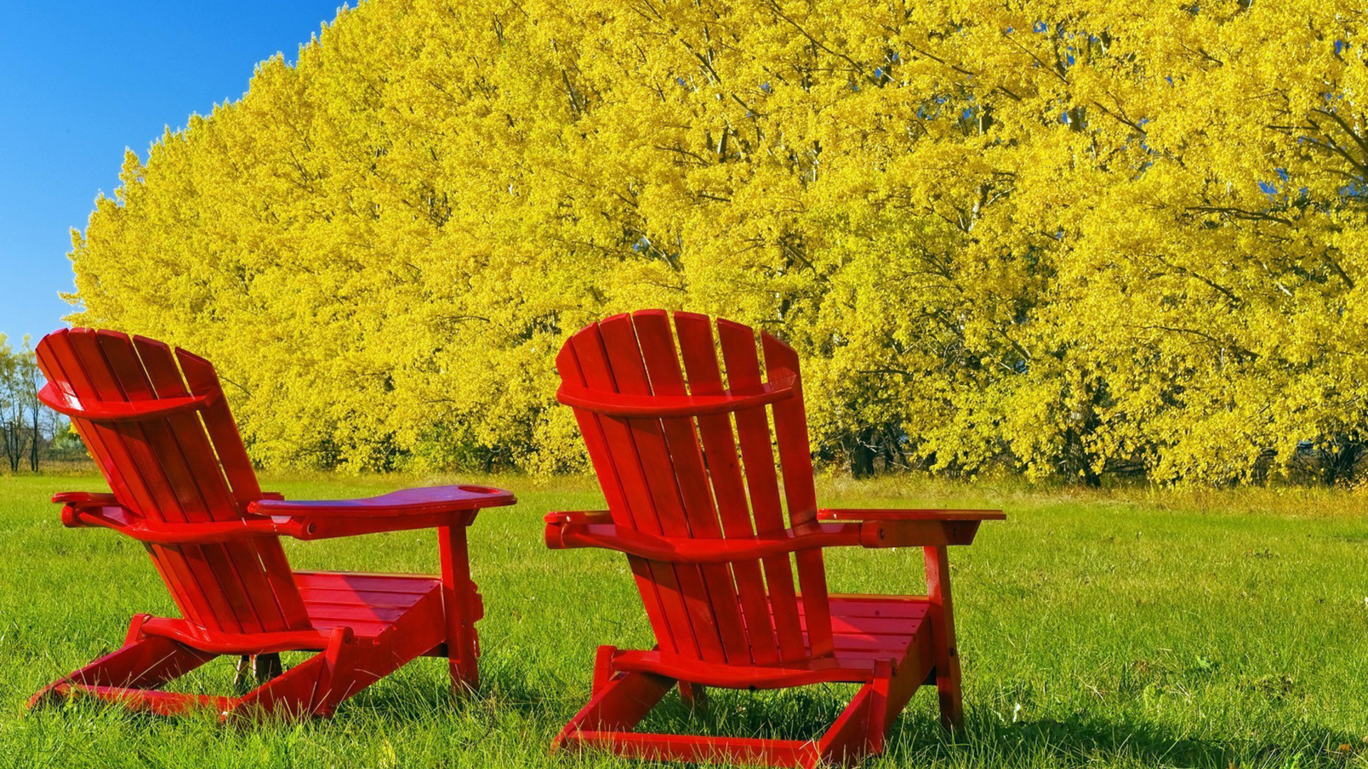 zen_red_chairs_free_wp.jpg