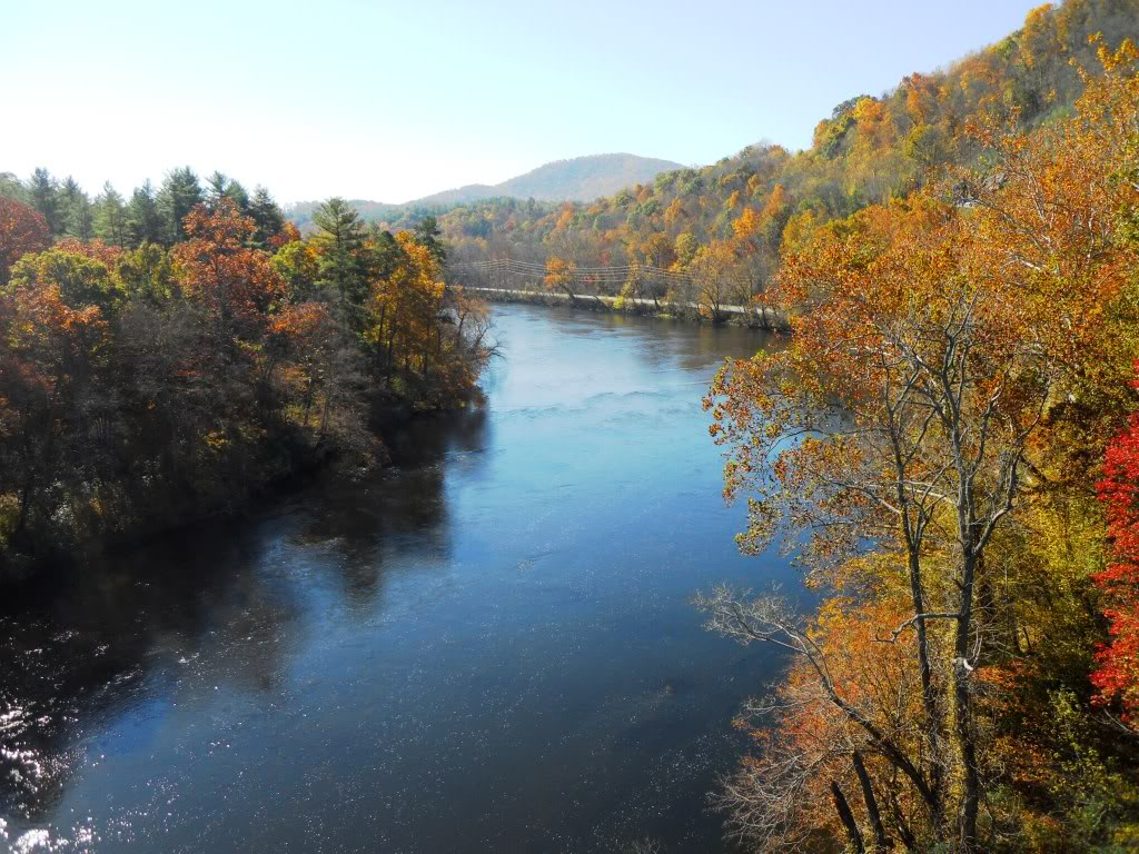 nature_river_asheville_french_broad.jpg