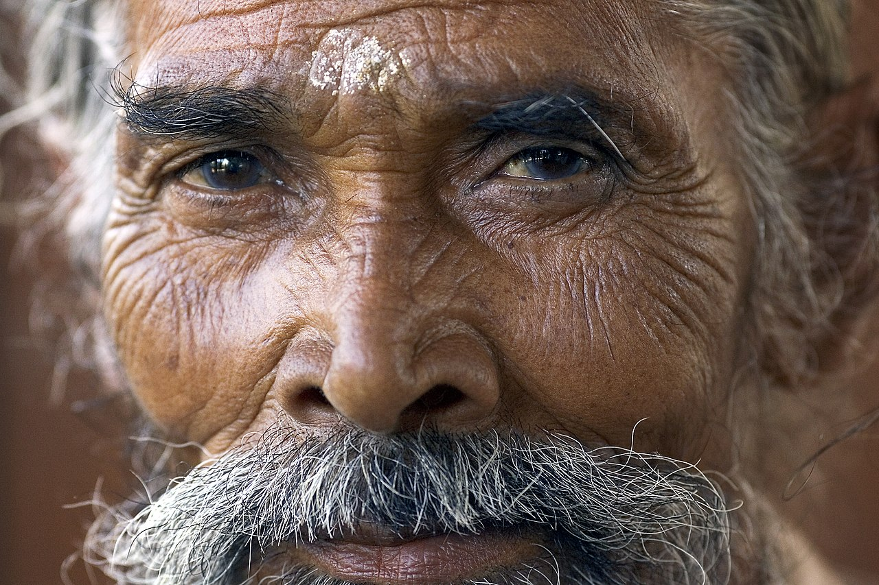1280px-India_-_Delhi_portrait_of_a_man_-_4780.jpg